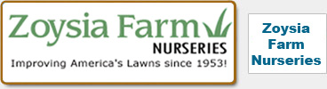 Zoysia Farm Nurseries